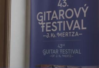 Mertzfestival-2018-videoreport